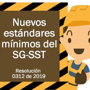 Formatos del SG-SST (seguridad y salud en el trabajo) + acompañamiento